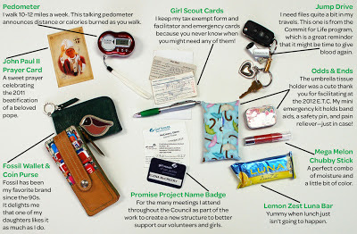girl scouts of san jacinto council blog purse onality