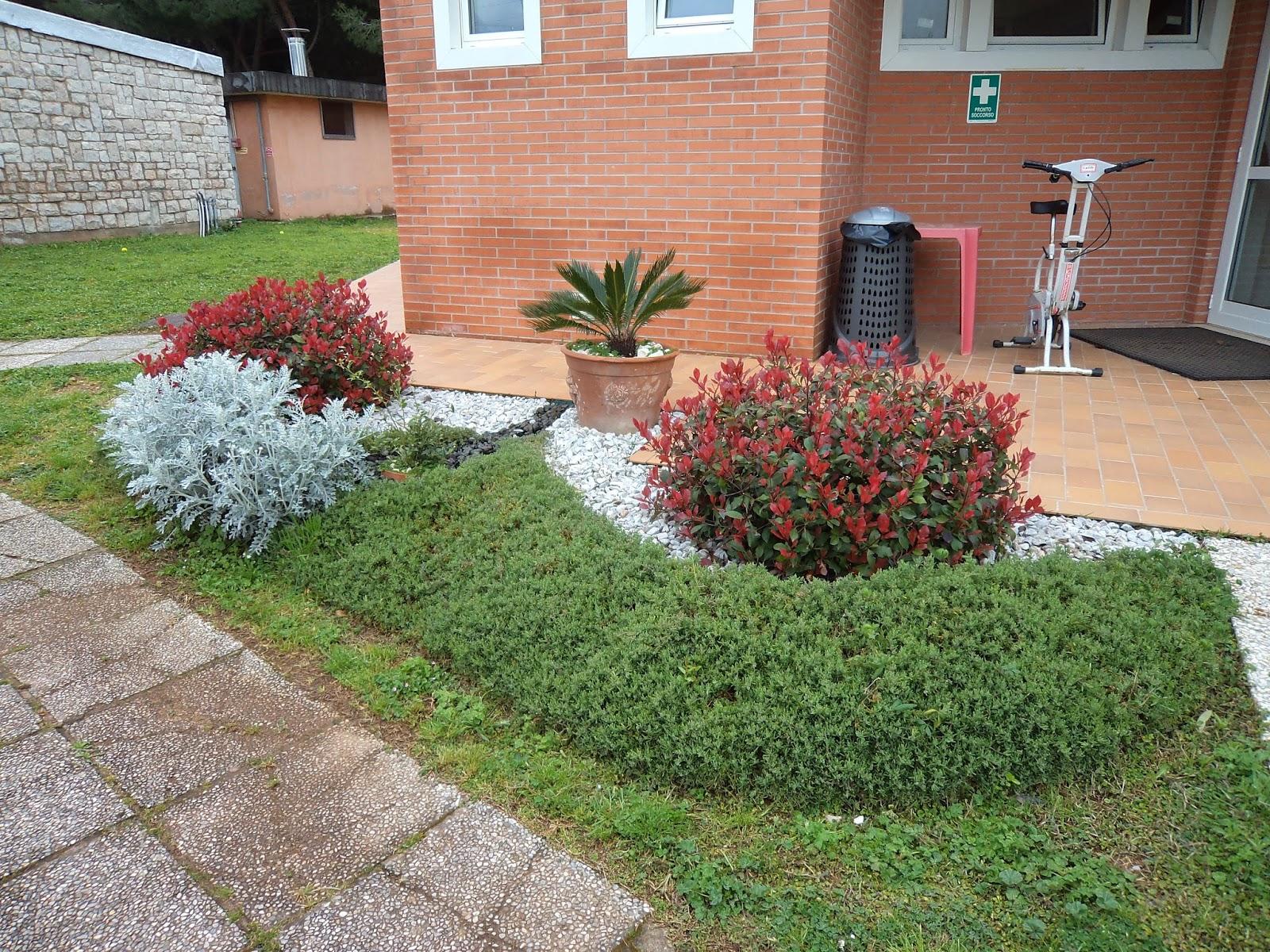 I giardini di carlo e letizia bordura di piante colorate for Piante e giardini