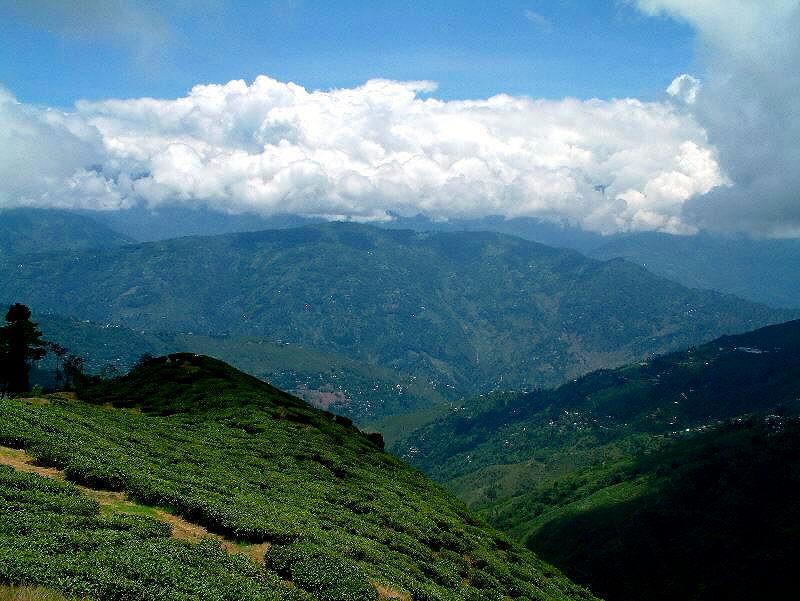 Visit to darjeeling the queen of hills dooars ecoviillege