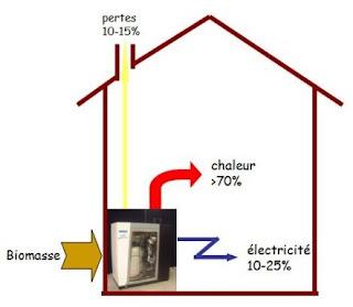 breuillet nature les nergies renouvelables 2 les diff rents types d 39 enr la biomasse 1ere. Black Bedroom Furniture Sets. Home Design Ideas