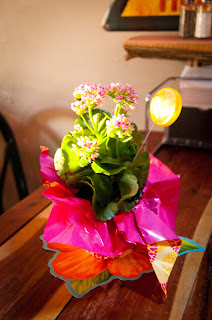 A $2 Centerpiece for tables at a Luau Party - True Blue Style Event Planning