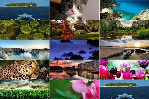 Las imágenes más bonitas de Internet VIII (14 fotos)