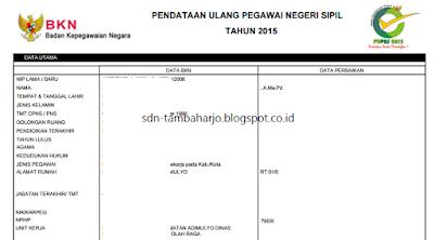 Solusi Gagal Kirim Verifikator Level 1 di PUPNS 2015