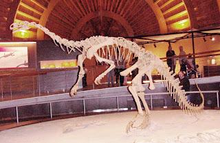 Colunga, Museo del Jurásico