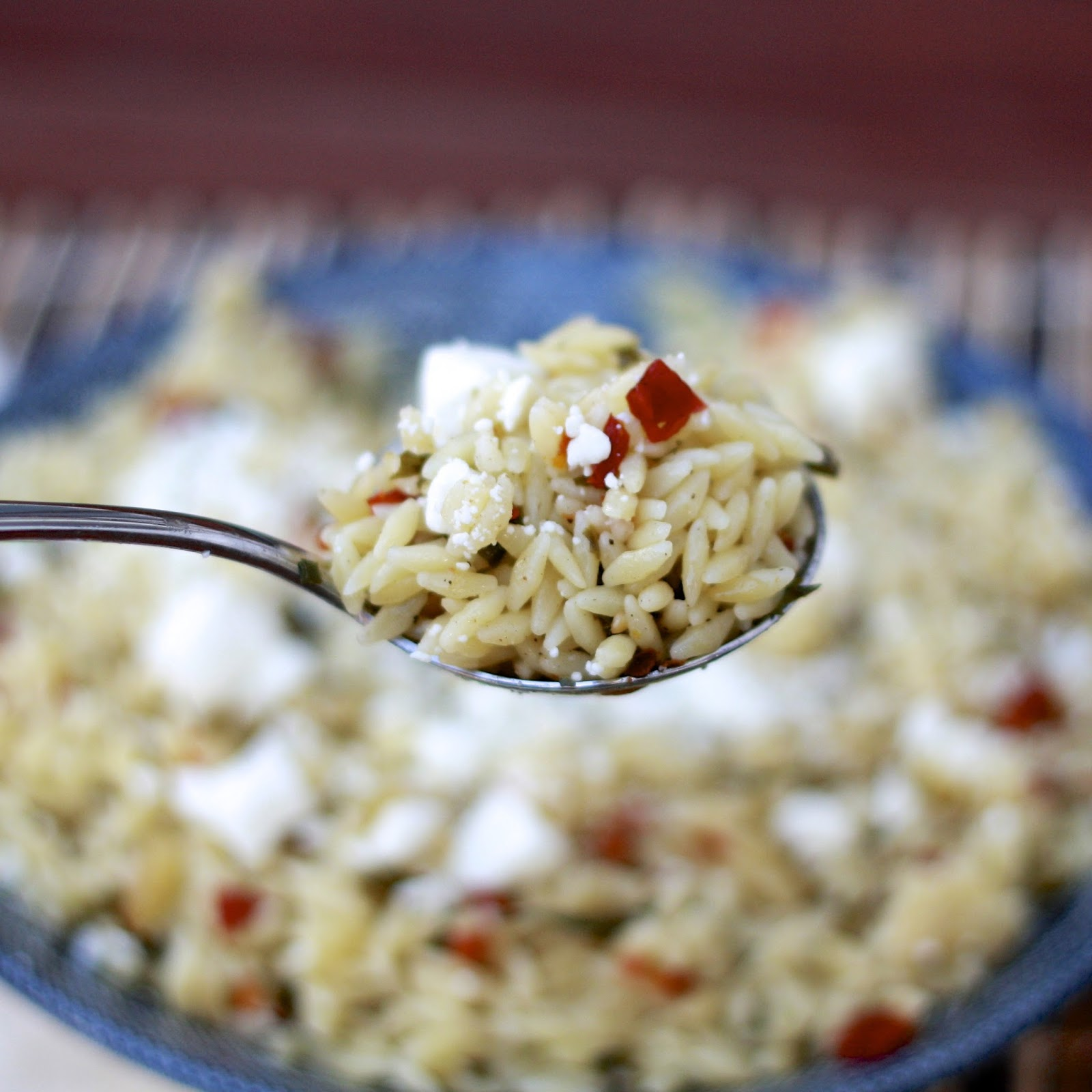 Orzo with Sun-Dried Tomatoes and Basil