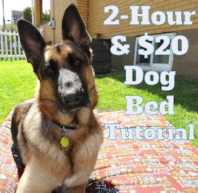 2-Hour & $20 Dog Bed Tutorial