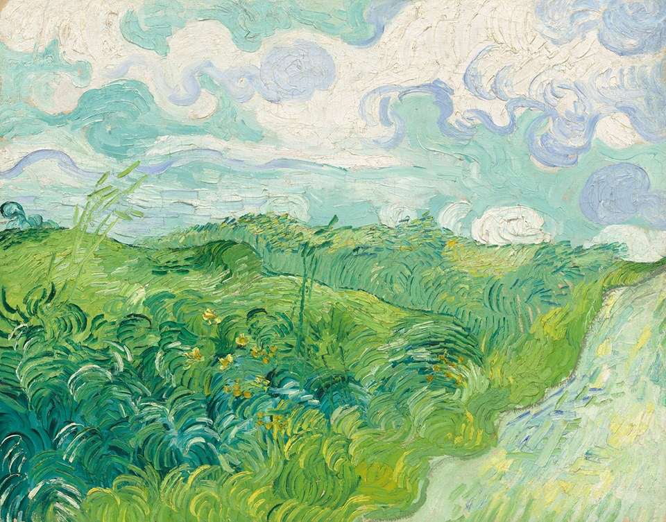 Judy Polan June - Artist plants 12 acre field to create a giant artwork inspired by van gogh
