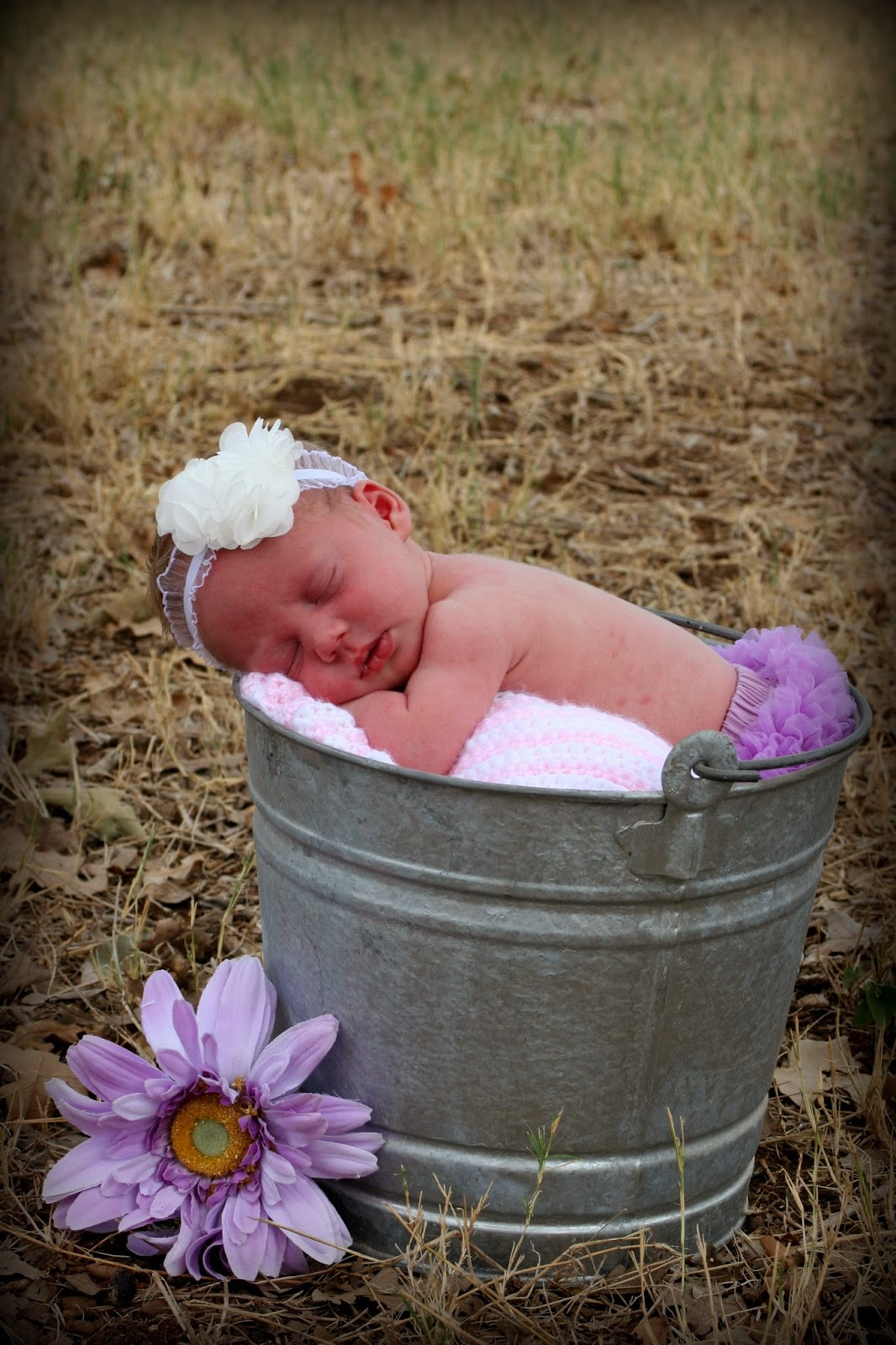 Our baby girl newborn photo shoot