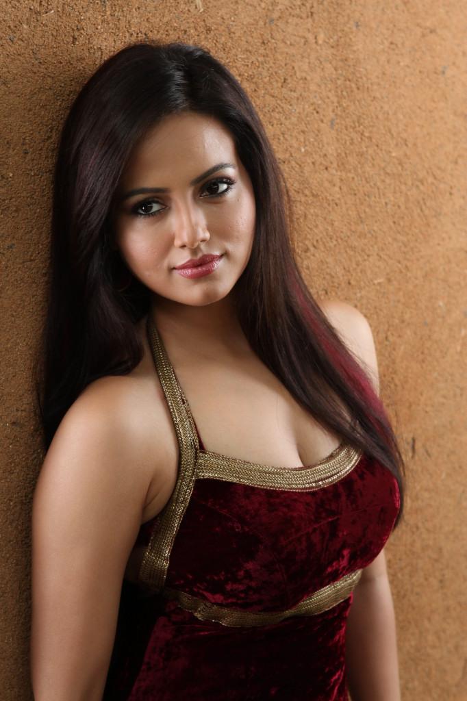 Gorgeous Sana khan image collection from movie gajjala gurram