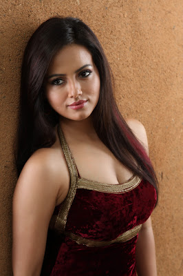 Gorgeous Sana khan image collection from movie gajjala gurram