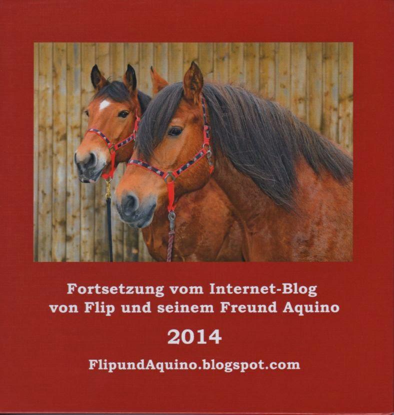 Blogbuch 2014: