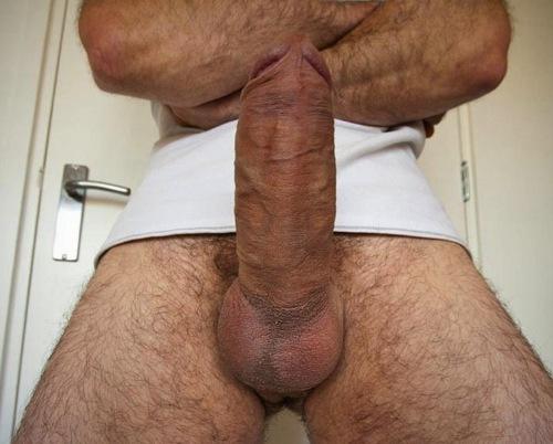 thick dick big balls № 43234