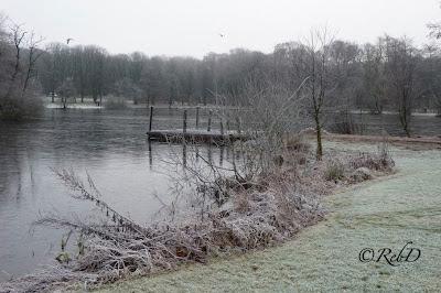 Trollsjön, Eslöv, i vinterskrud. Brygga. Rimfrost. foto: Reb Dutius
