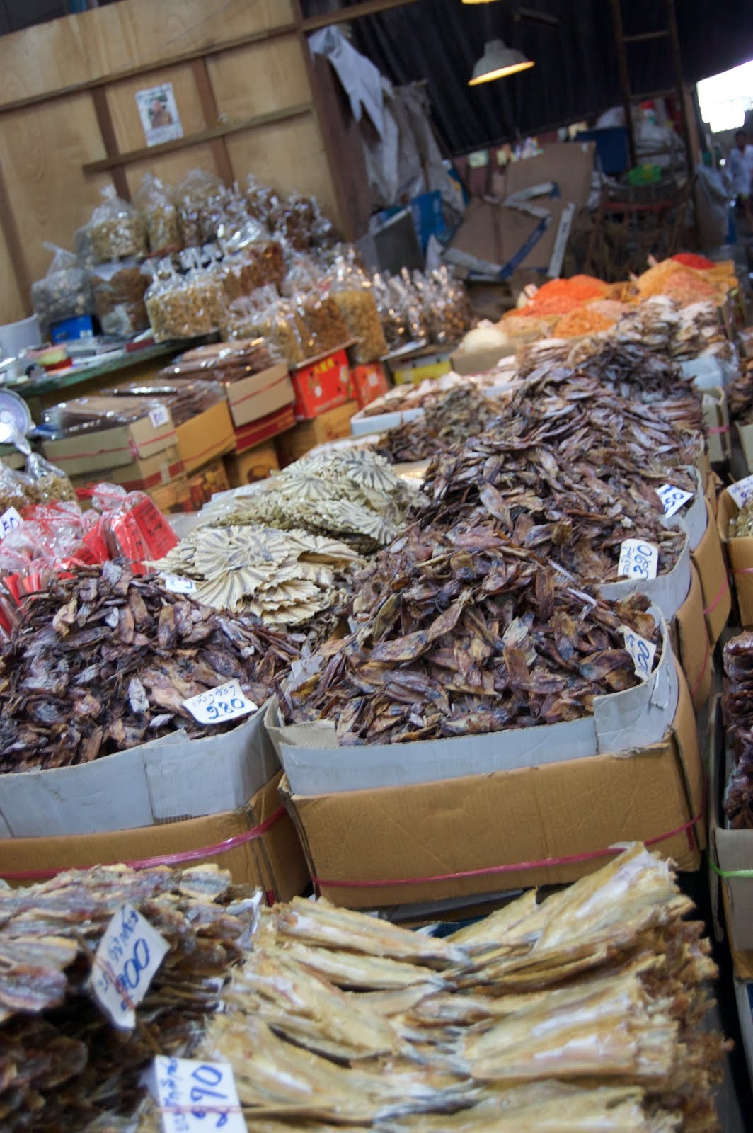 Dried Seafood in the Market in Bangkok, Thailand (A City Guide)