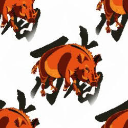 cerdo zodiaco chino