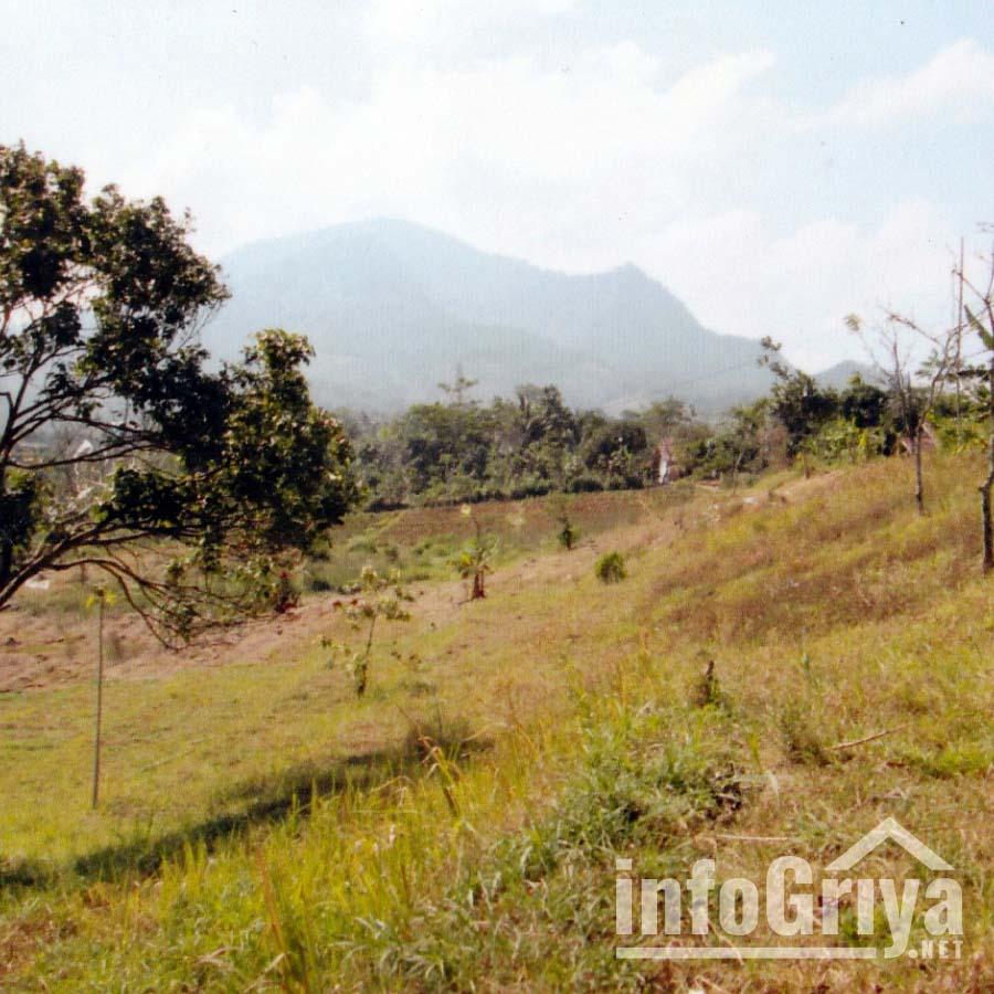 Tanah Dijual di Bandung Info Griya