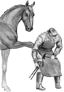 Подковывание лошади