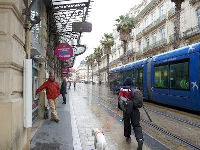 サン=ロック駅からコメディー広場への道 モンペリエ