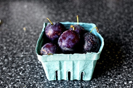 williams carlos williams plums