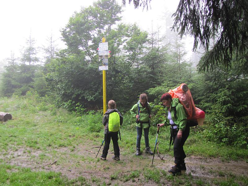 Na przełęczy pod Hričovcom (960 m n.p.m.).