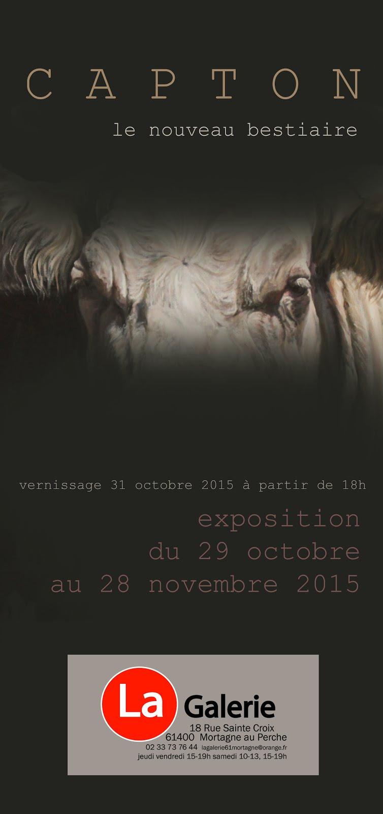 MORTAGNE AU PERCHE : EXPOSITION PERSONNELLE À LA GALERIE