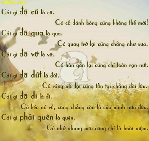 Những câu nói suy ngẫm về tình yêu và cuộc sống
