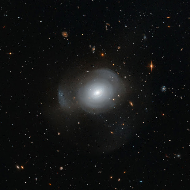 Elliptical Galaxy PGC 6240