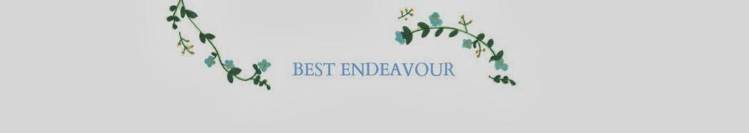Best Endeavour