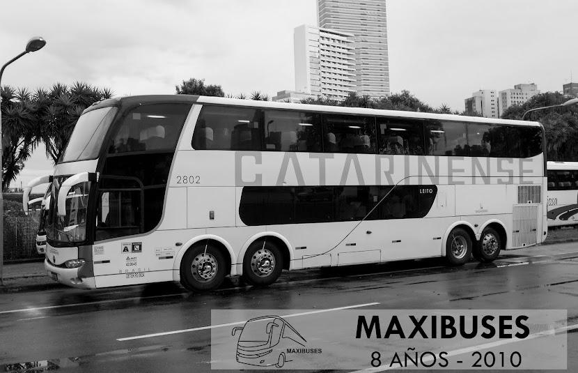 MAXIBUSES