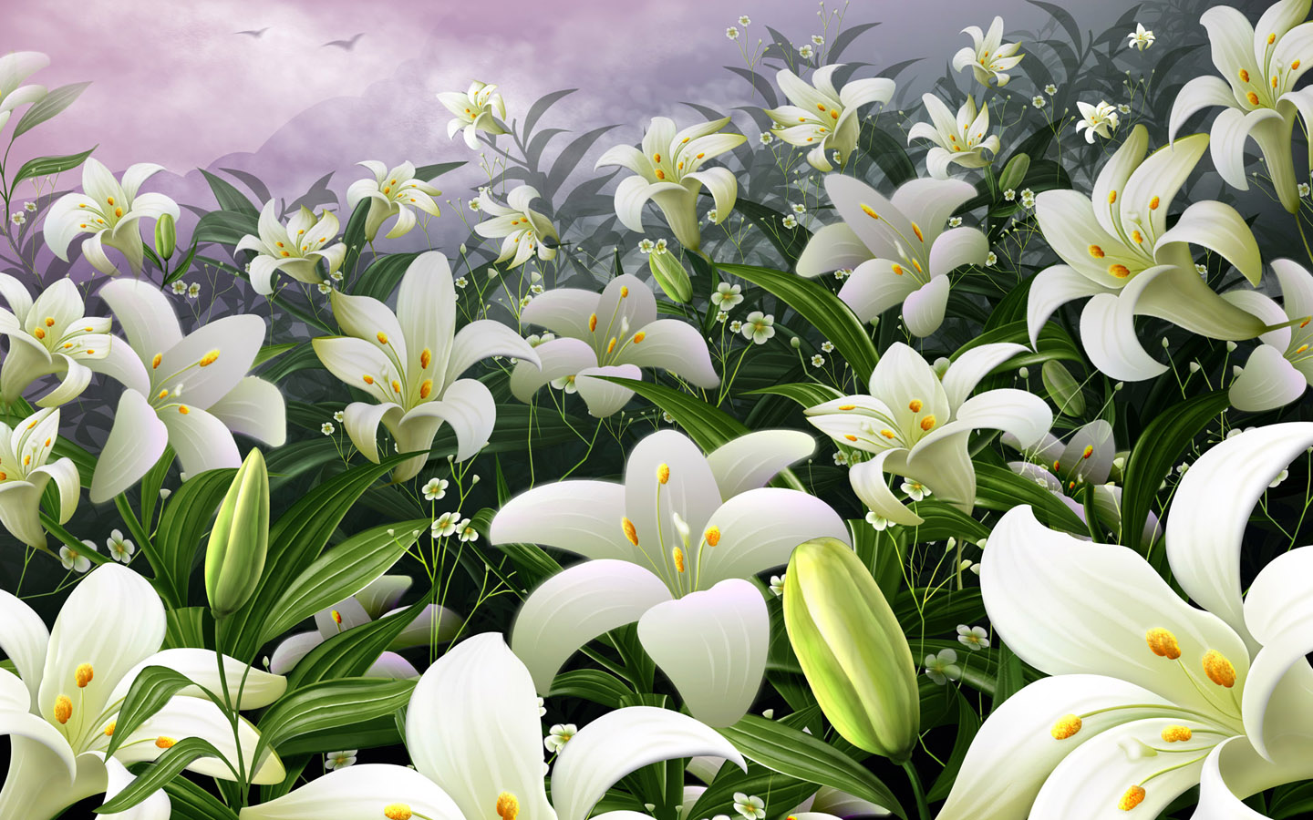 Flowers wallpapers white lilies flowers wallpapers for Jardin de fleurs blanches