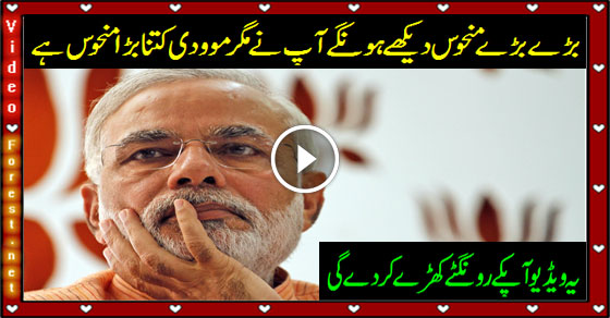 bodeful indian prime minister moodi
