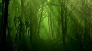 Beautiful green Nature wallpaper
