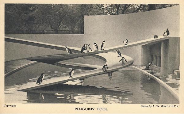 Londres - La piscine des pingouins - London Zoo  Architecte: Berthold Lubetkin / Tecton (son groupe d'architectes)  Construction: 1934
