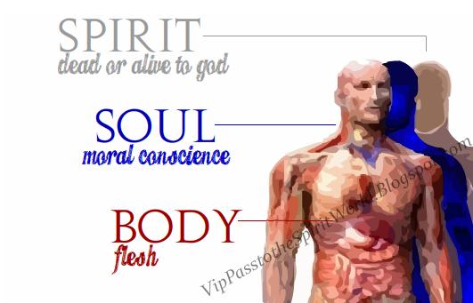 Body Spirit Spirit Soul Body Bible
