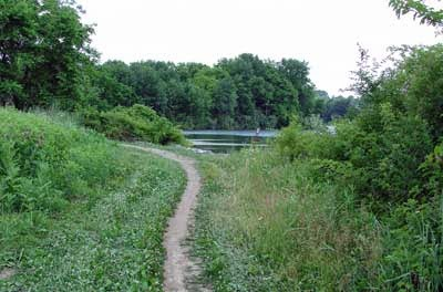 Blue Marsh Lake trail image