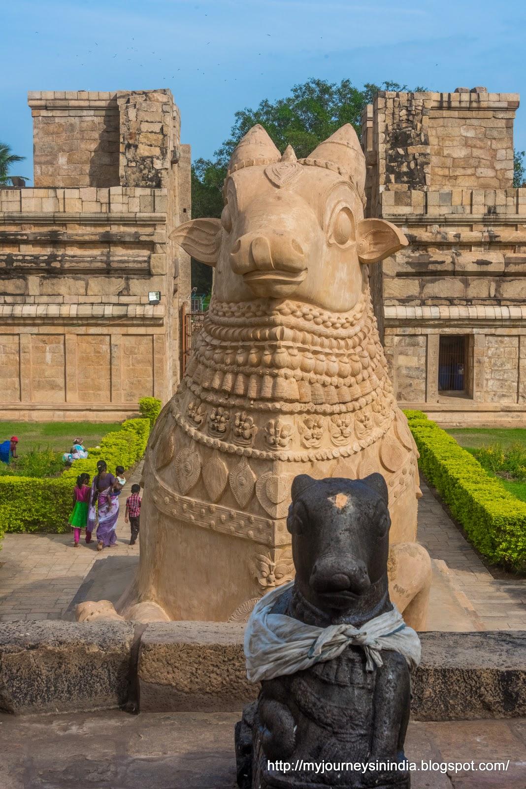 Gangaikondacholapuram Big Nandi
