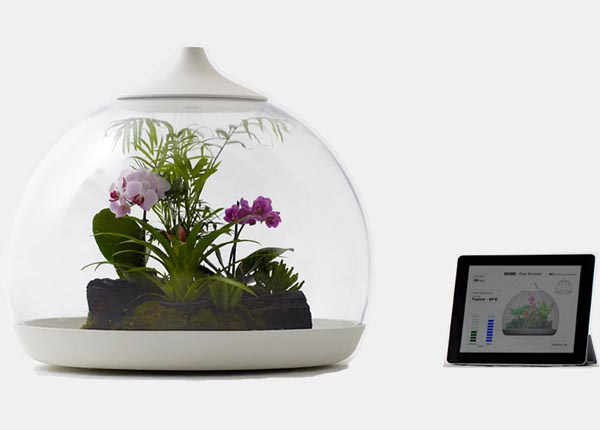Biome Terrarium controlled by smartphone or iPad Seen On www.coolpicturegallery.us