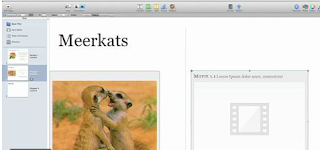 ibooks author examples