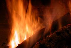 ... encendió el fuego con ramas de verbena y aulaga