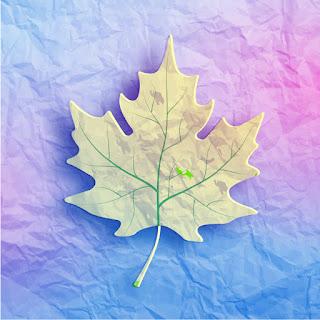 使い古した紙と楓の葉の背景 Maple leaf on grunge paper イラスト素材