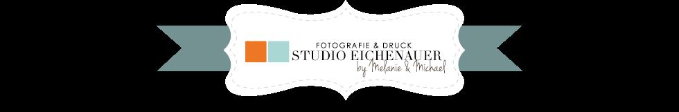 Fotografie Studio Eichenauer, Steyr - Hochzeit, Portrait, Baby