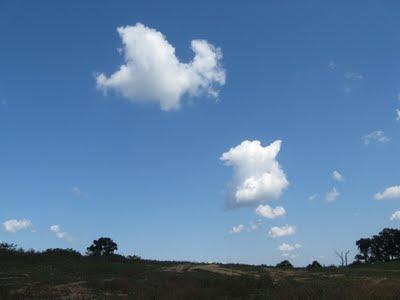 farm blue sky