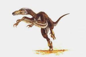 Dinosaurs Arms