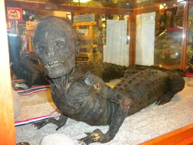Μυστηριώδες έκθεμα σε μουσείο των ΗΠΑ