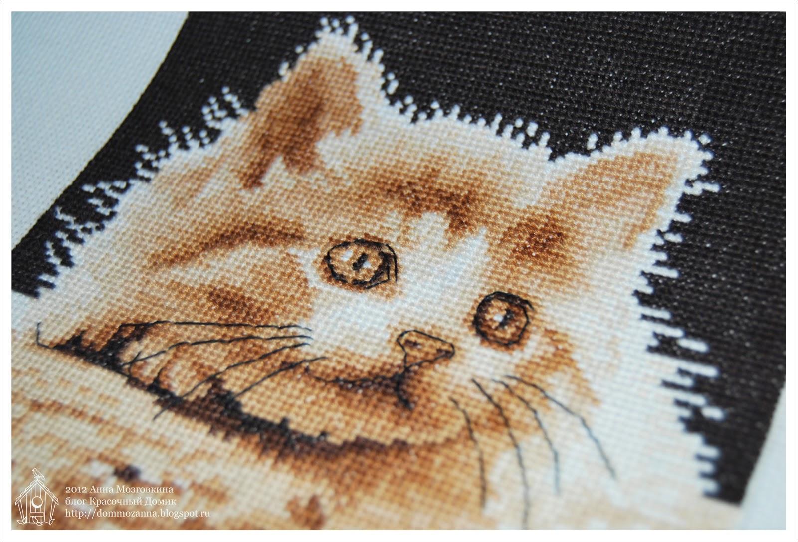 Большеглазый котенок DMC вышивка крестом