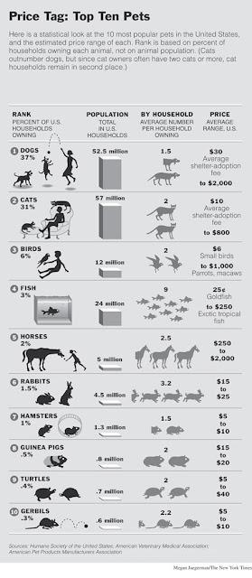 top-10-most-popular-american-pets
