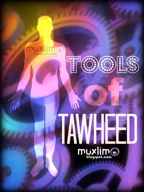 Tools of Tawheed