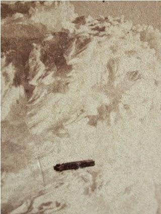 terlihat ufo ditahun 1870