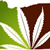 Oregon Votes to Legalize Recreational Marijuana This November