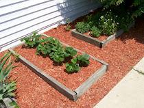 Front & Backyard Gardens